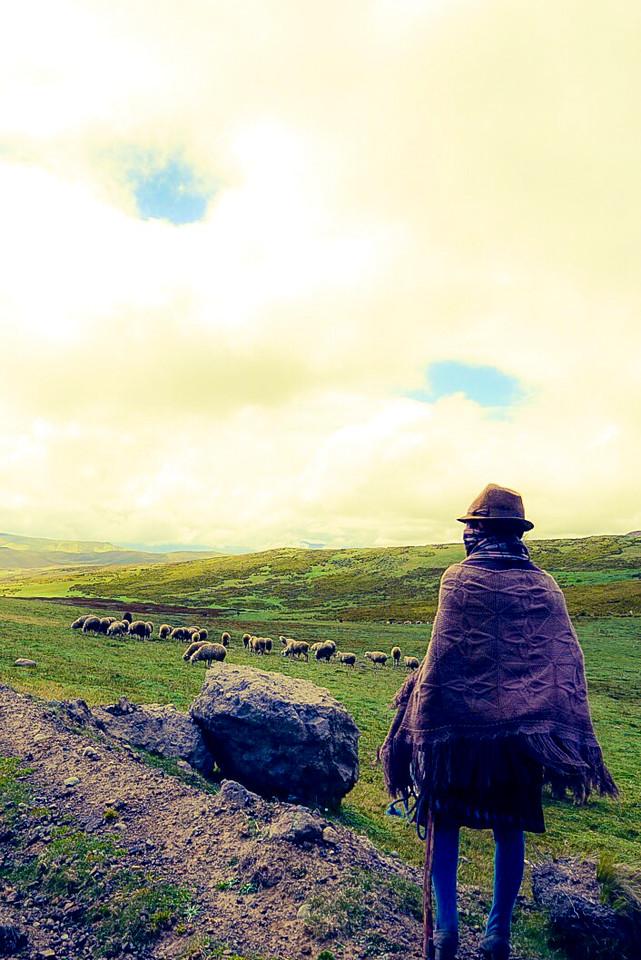 Latacunga Ecuador Sheepherder, Learning Photography